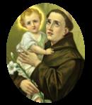 Le Saint du Mois de Juin - Saint Antoine - Miraculeux