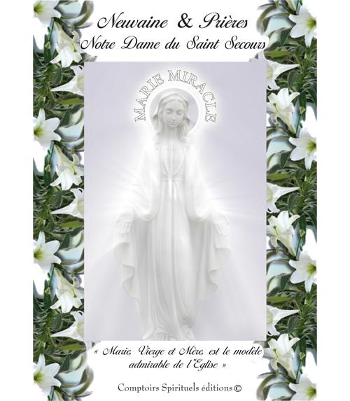 neuvaine notre dame du Saint Secours